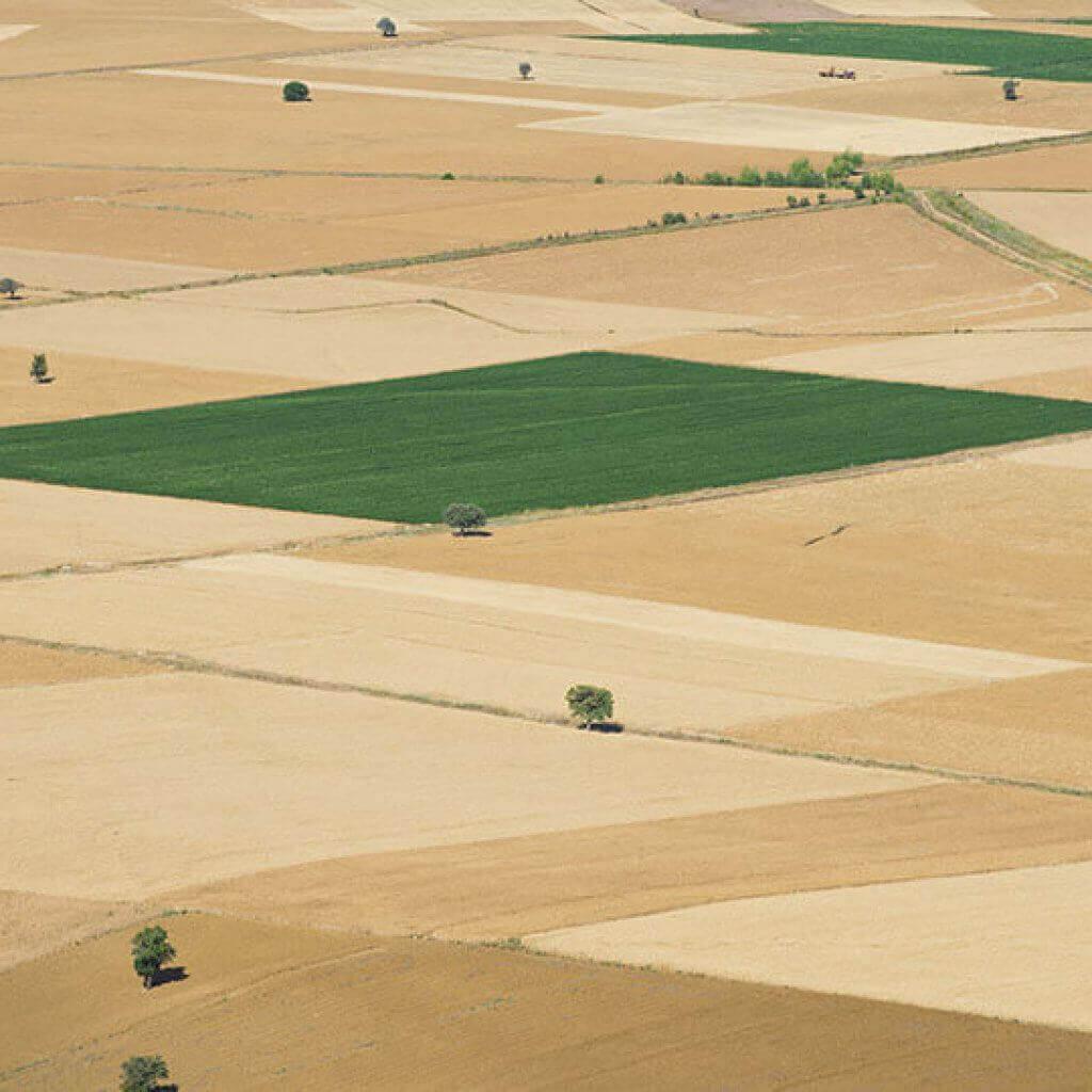 סוגי קרקעות – חשוב שתדעו מה ההבדל ביניהם